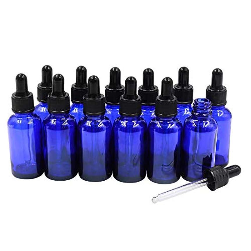 細分化する落胆させるアドバイス12本セット ブルースポイト遮光瓶 アロマオイル 精油 香水やアロマの保存 小分け用 遮光瓶