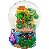 Westman Works フロリダ地図 スノードーム ポリレジン水球 手描き お土産 3 1/2インチ