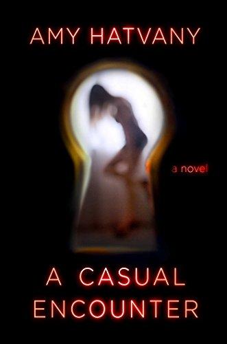 A Casual Encounter: A Novel (English Edition)