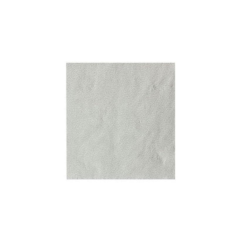 フェザー学校の先生協力ピカエース ネイル用パウダー パステル銀箔 #640 パステルホワイト 3.5㎜角×5枚