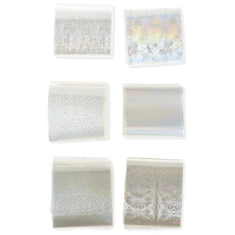 定数透過性磁器ネイルステッカー 透明 ネイル箔 キラキラ ネイルパーツ アート転写 ステッカーペーパー ネイル ヒントデコ レーション ネイル用品 マニキュアツール ネイルステッカー 6本