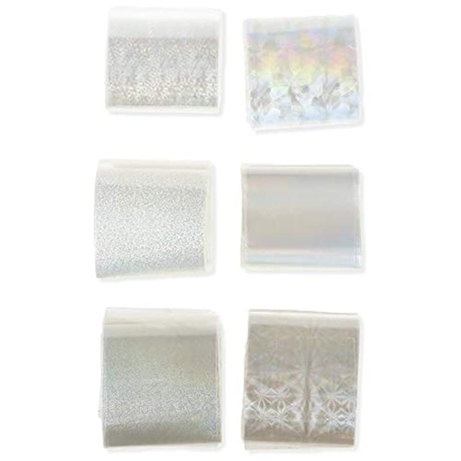砂困難シダネイルパーツ ネイルステッカー 透明 ネイル箔 キラキラ ネイルパーツ アート転写 ステッカーペーパー ネイル ヒントデコ レーション アクセサリー 6本 ハンドメイド材料