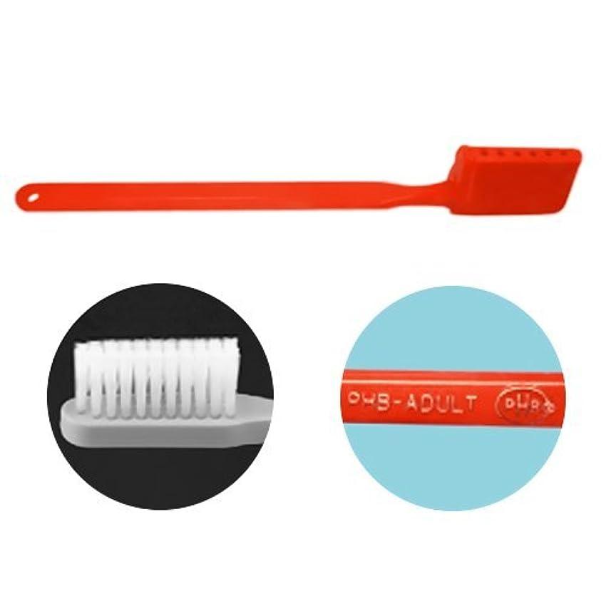 表示カカドゥ学校の先生PHB 歯ブラシ アダルトサイズ 1本 ネオンオレンジ