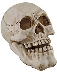 樹脂IncenseホルダーHuman Skull Shaped Incense Burnerボックス7.75 X 5.75 X 4.5インチホワイトモデル# pwh-63