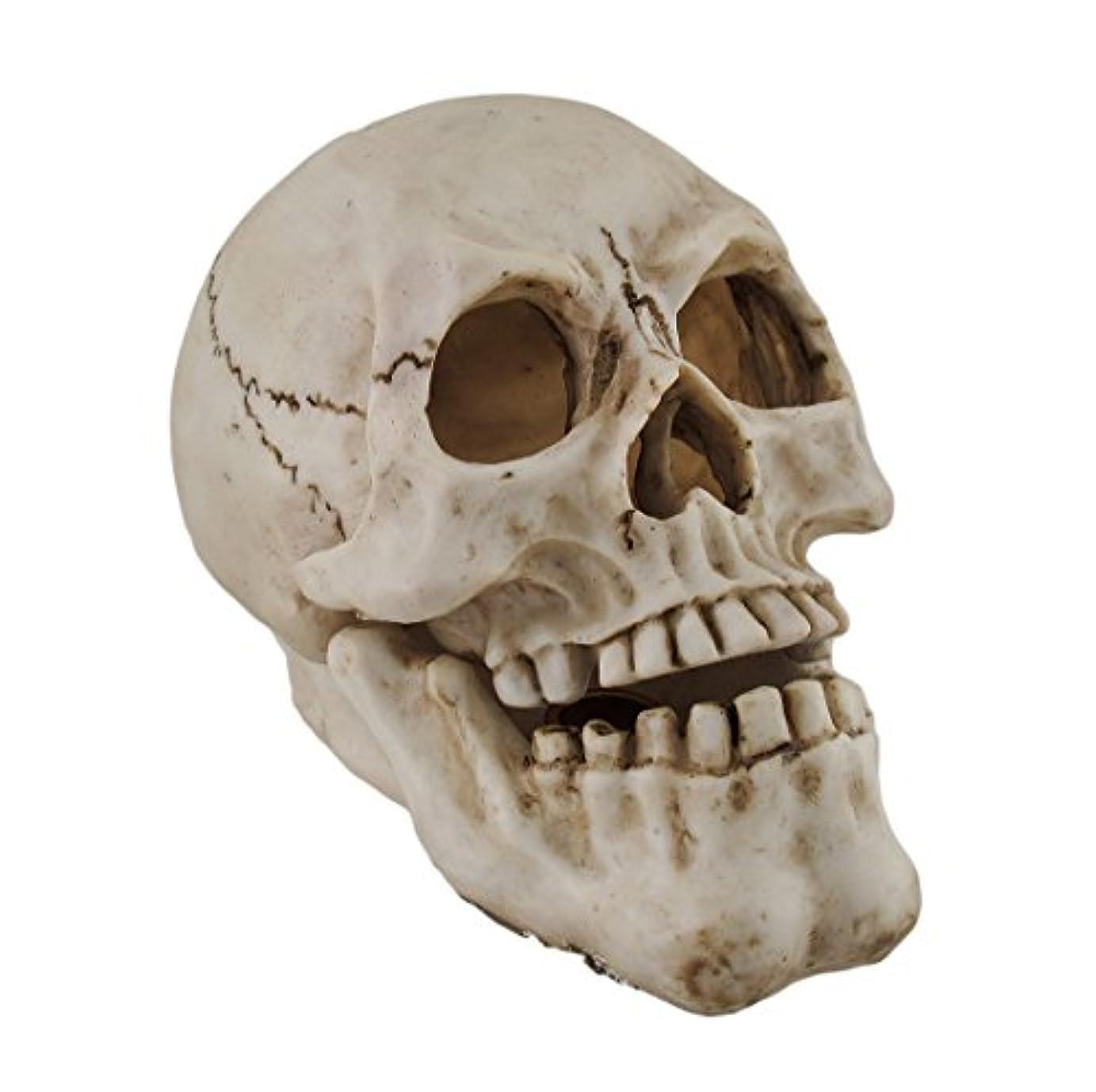 九時四十五分仮定パトロール樹脂IncenseホルダーHuman Skull Shaped Incense Burnerボックス7.75 X 5.75 X 4.5インチホワイトモデル# pwh-63
