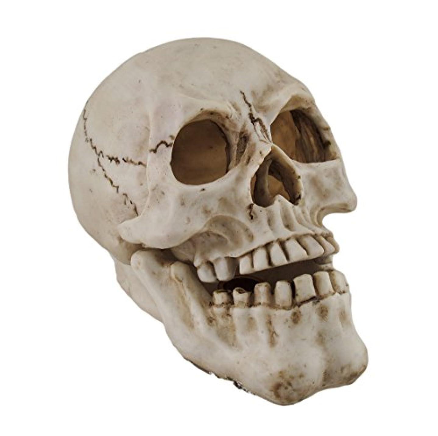 気取らない割り当てます原始的な樹脂IncenseホルダーHuman Skull Shaped Incense Burnerボックス7.75 X 5.75 X 4.5インチホワイトモデル# pwh-63