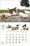 2019 中山祥代 ねこ散歩カレンダー(壁掛け) ([カレンダー]) 画像