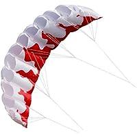 (タカイト) 凧 カイト 立体 スポーツカイト 大きい パラシュート型 ファイヤー 2m 白