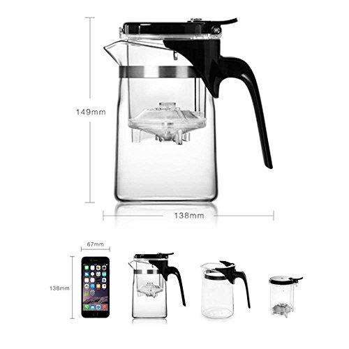 Iriz ガラスポット、ティーポット、お茶急須 、耐熱ガラス茶器 ホウケイ酸ガラス 17オズ