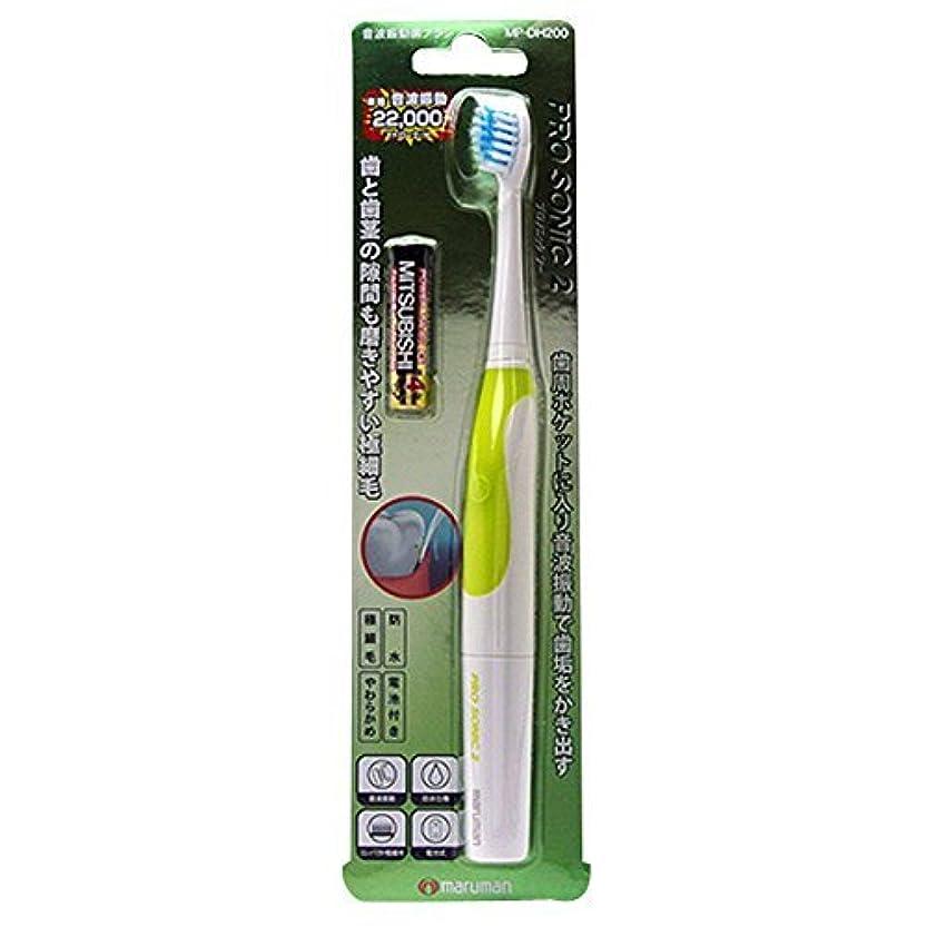 浪費パケットシングル音波振動歯ブラシPROSONIC2MP-DH200GR