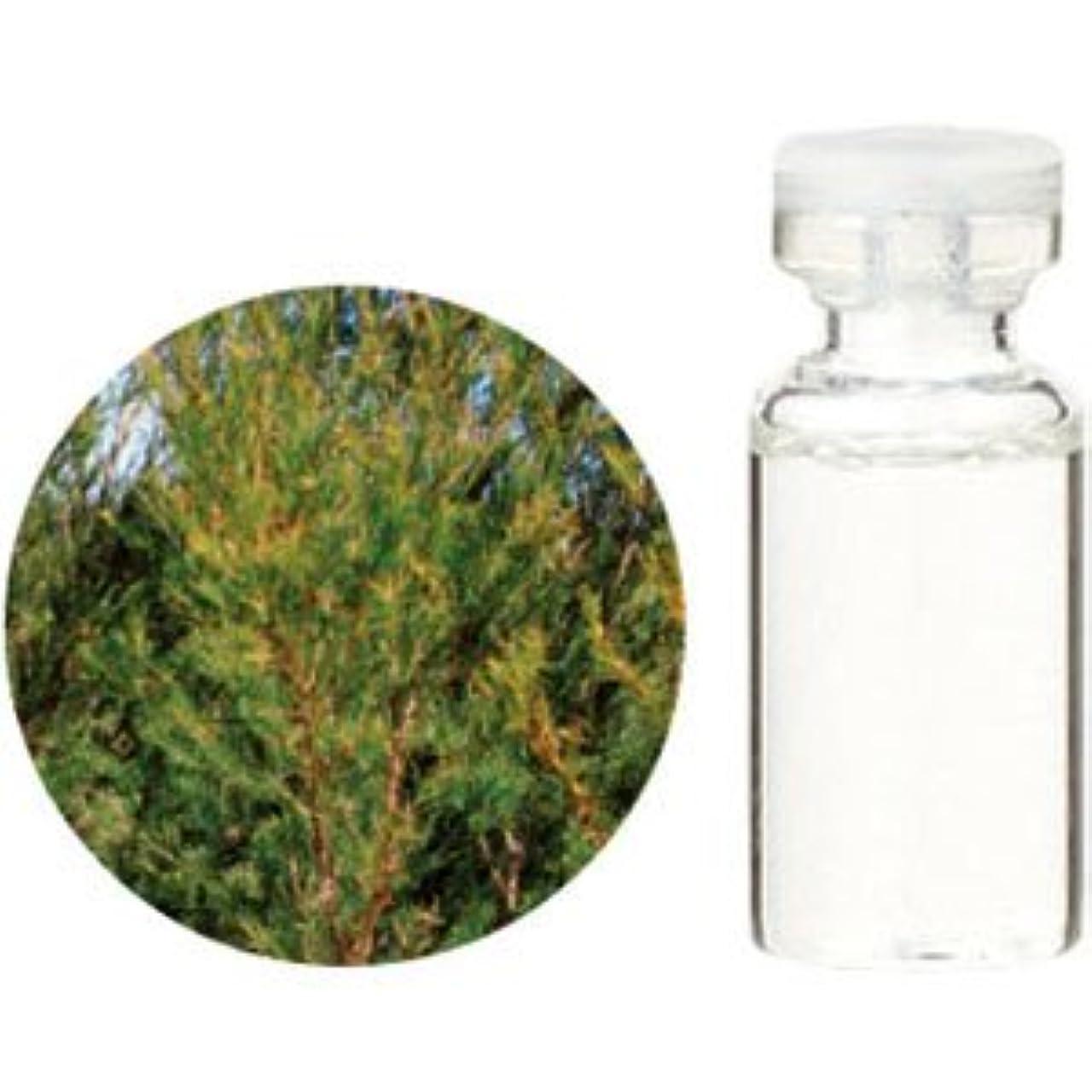実質的揮発性に頼る生活の木 エッセンシャルオイル ティートゥリー 50ml(業務用サイズ) 08-434-3690