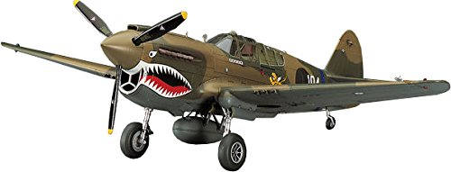 ハセガワ 1/48 アメリカ陸軍 P-40E ウォーホーク プラモデル JT86