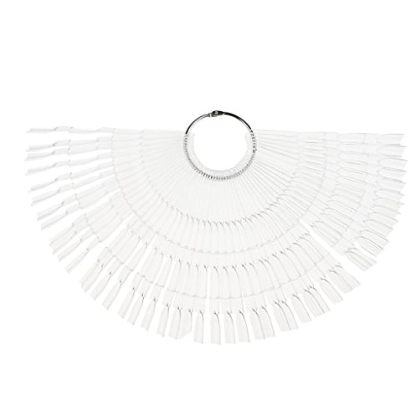 Fenteer ネイルアート カラー表示チャート 約50個の扇形ヒント カラーディスプレイパレット ネイル ポリッシュ 2タイプ選べる - クリア