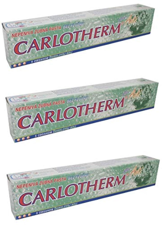 本能成長する笑いCarlotherm (フッ素フリー)ペパーミントオイルとサーマルソルト ハミガキ粉 147g x 3個