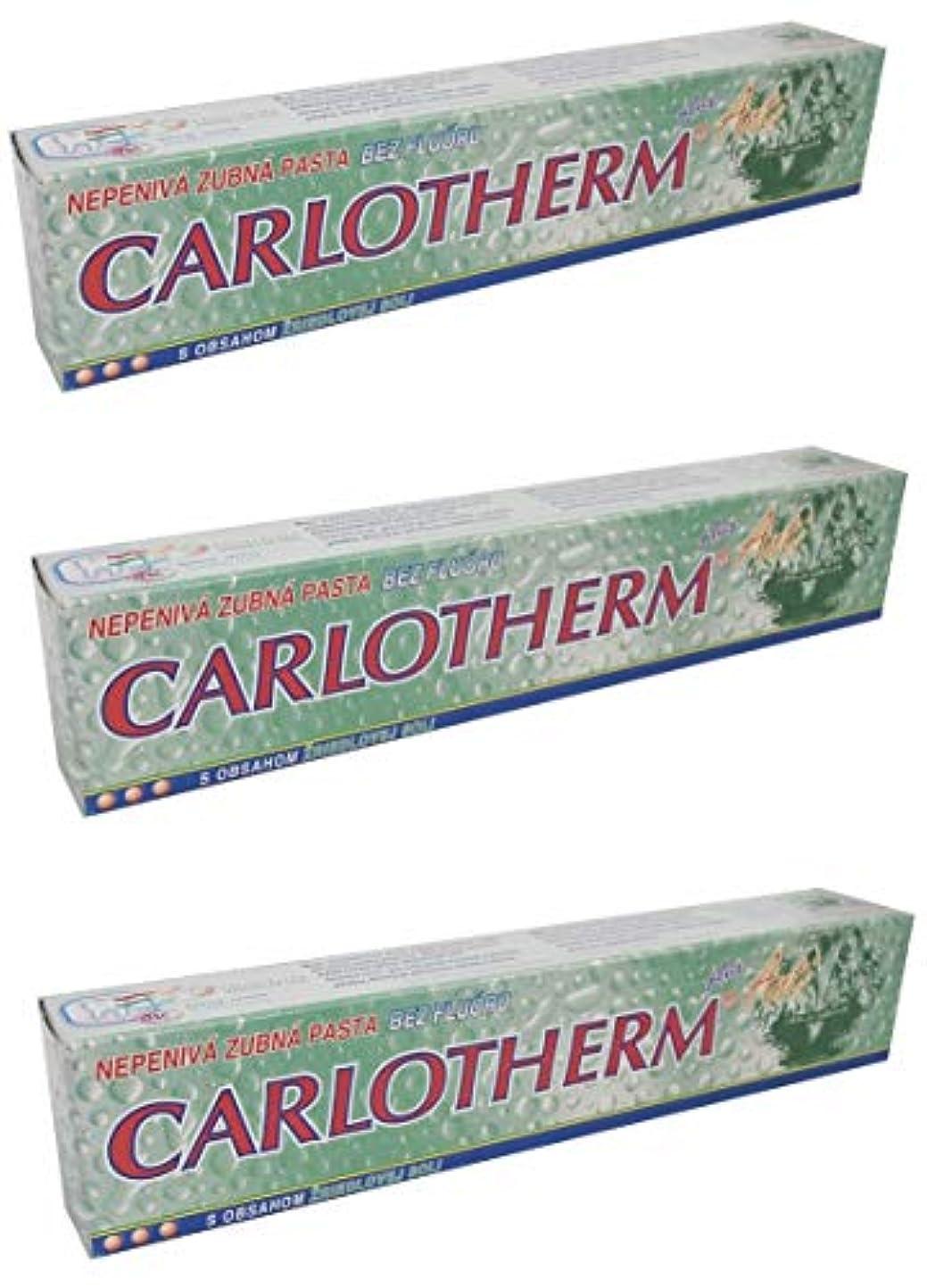 困難口頭電化するCarlotherm (フッ素フリー)ペパーミントオイルとサーマルソルト ハミガキ粉 147g x 3個
