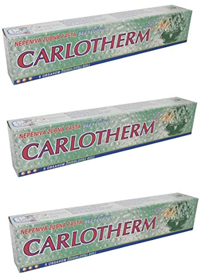 排除マニフェスト怒るCarlotherm (フッ素フリー)ペパーミントオイルとサーマルソルト ハミガキ粉 147g x 3個