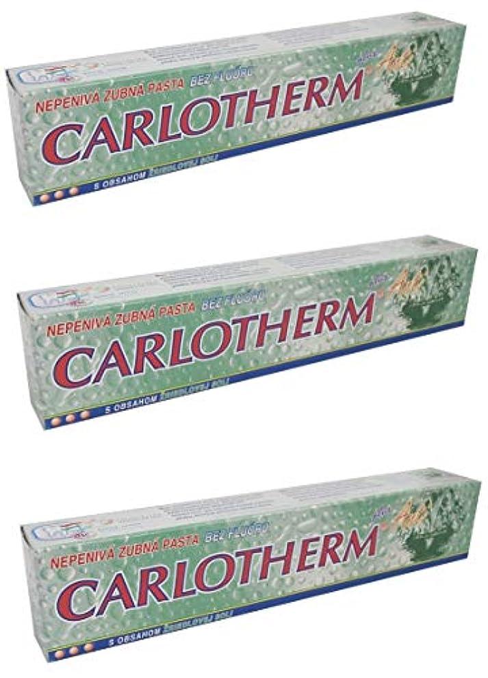ダルセットリファイン政治Carlotherm (フッ素フリー)ペパーミントオイルとサーマルソルト ハミガキ粉 147g x 3個