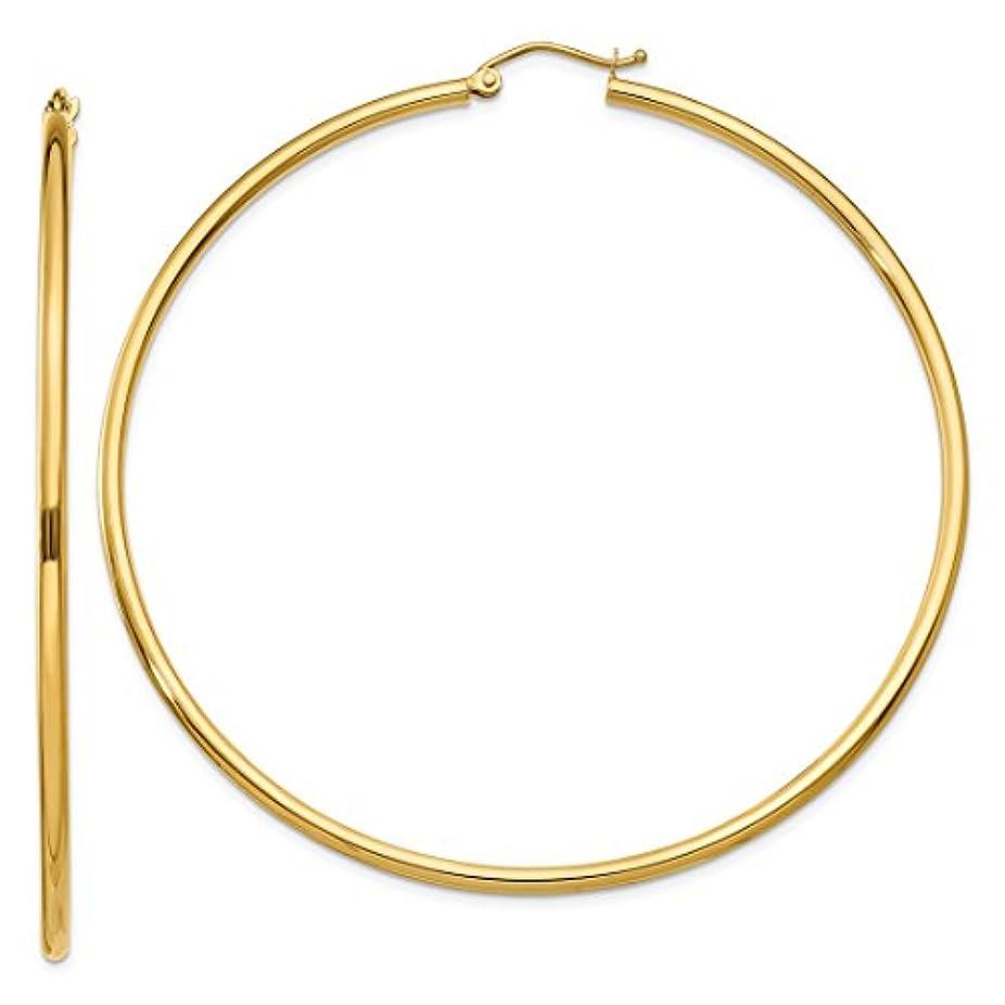 ヤギ私達放射するICE CARATS 14カラットイエローゴールド 2mm ラウンドフープピアス イヤーフープセット クラシックファインジュエリー 女性へのギフトに最適