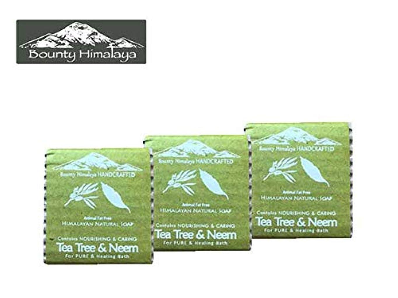 プラットフォーム涙落胆するアーユルヴェーダ ヒマラヤ ティーツリー?ニーム ソープ3セット Bounty Himalaya Tea Tree & Neem SOAP(NEPAL AYURVEDA) 100g