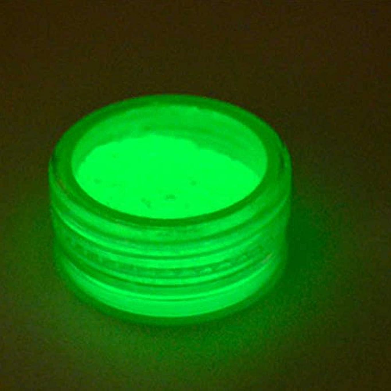 ヘビパドル無条件Timsa ネイルパウダー 暗闇で光る蓄光顔料 暗闇で光る 夜光塗料 蛍光顔料 ネイルオーロラ ネイルアート ネイルカラーレーザーマニキュアセット キラキラパウダー 不思議 デコ用 ケース入り 10色選択 (E)