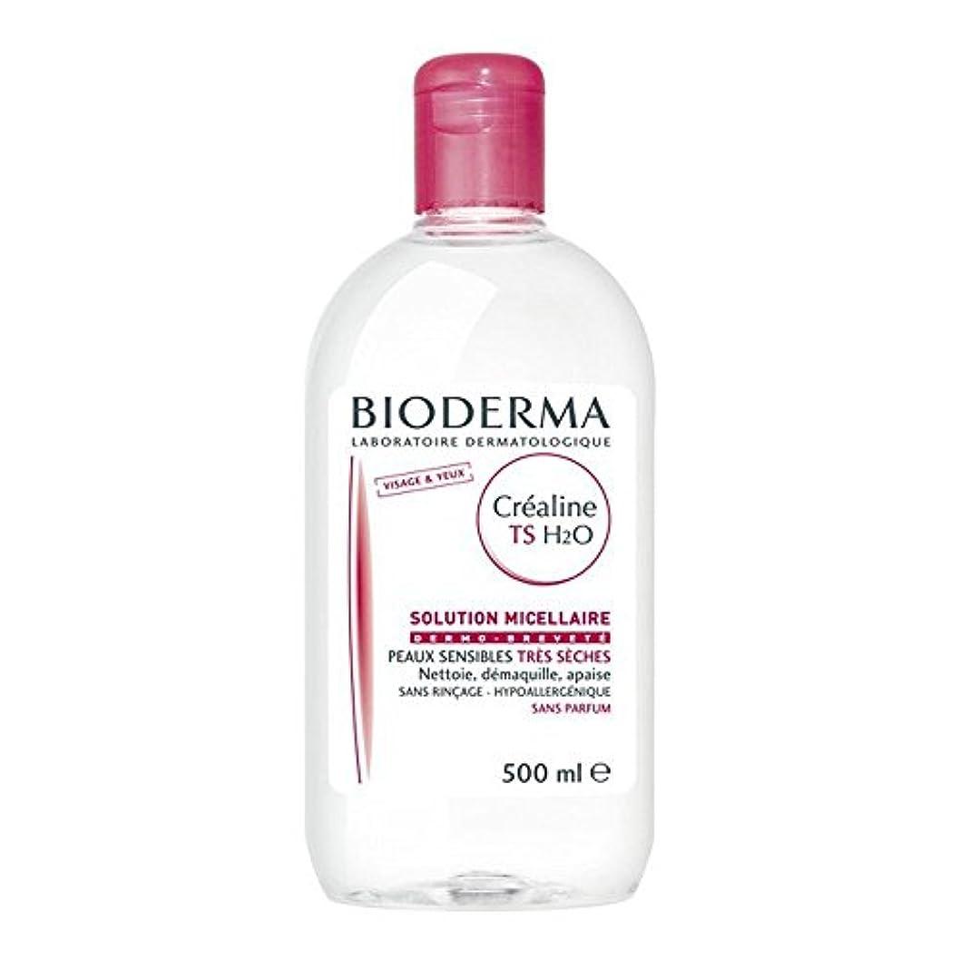 二十びっくりする改修するビオデルマ サンシビオ H2O(エイチ ツーオー)【ベリードライ 乾燥肌用 TS】 500ml