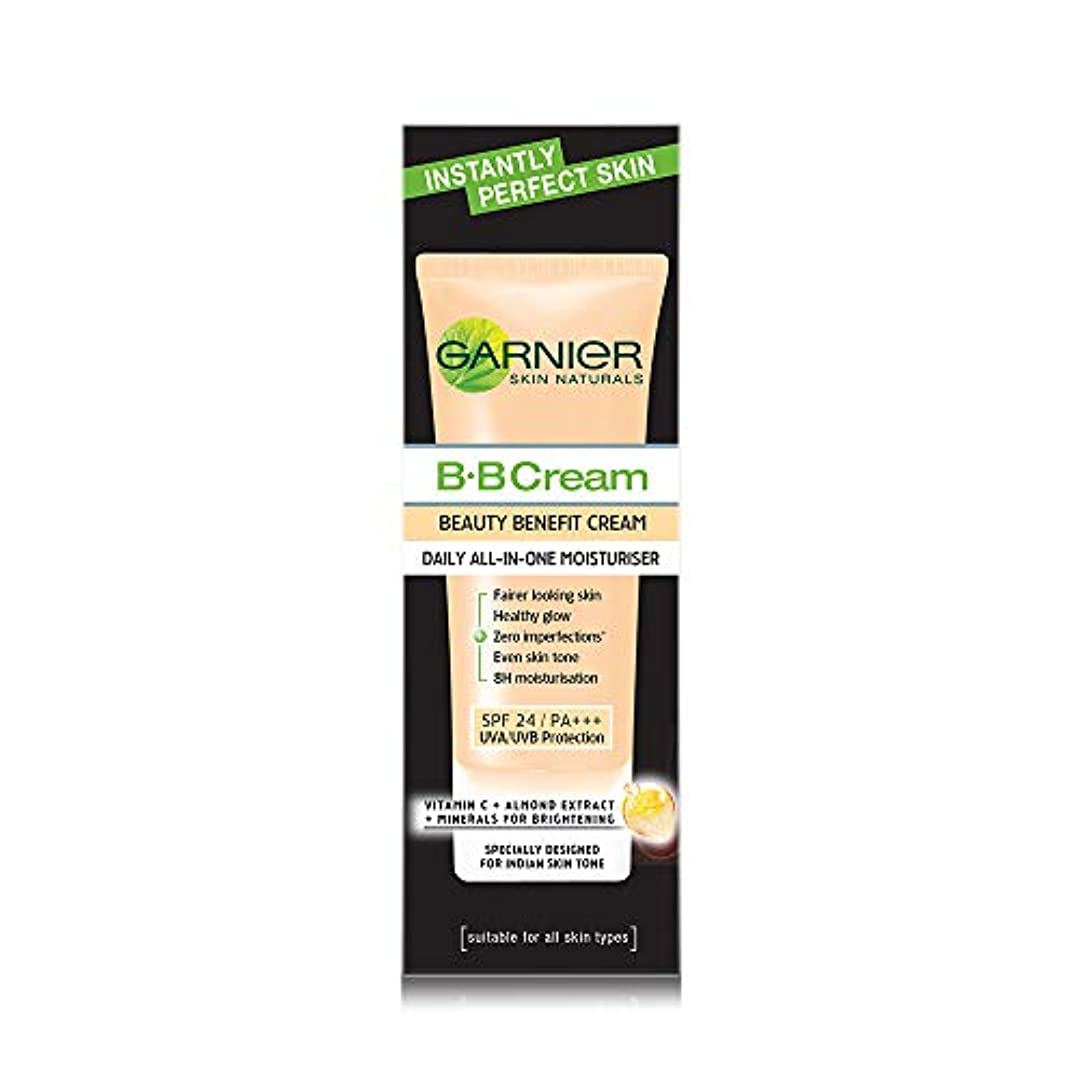 垂直くるみ放散するGarnier Skin Naturals Instantly Perfect Skin Perfector BB Cream, 30g