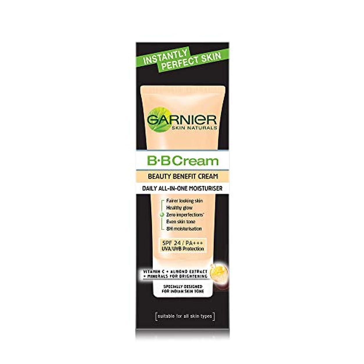 委託ジャム離すGarnier Skin Naturals Instantly Perfect Skin Perfector BB Cream, 30g