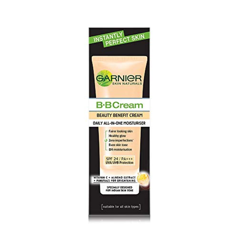 欲望いらいらする容量Garnier Skin Naturals Instantly Perfect Skin Perfector BB Cream, 30g