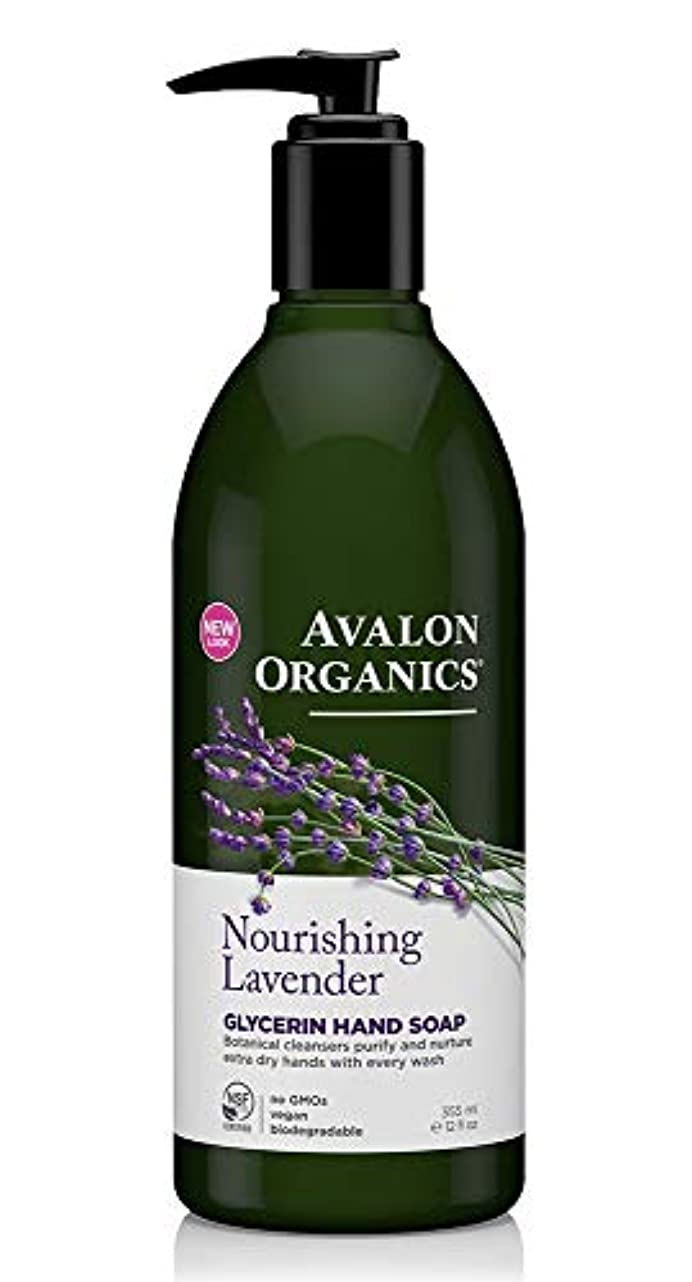 周りマオリ知的Avalon Organics Lavender Soap Liquid 355ml