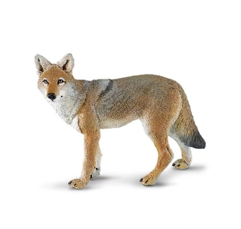 サファリ North American Wildlife Series Coyote 227229 (並行輸入)