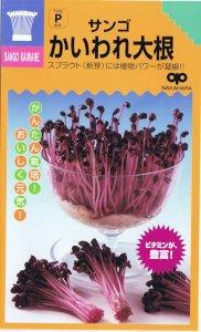 【種子】かんたんスプラウト サンゴ かいわれ大根 35ml