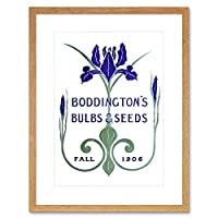 Vintage Advert Boddingtons Seeds Bulbs Fall 1906 Art Print Framed Poster Wall Decor 12x16 inch ビンテージ広告ポスター壁デコ