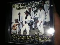 Toro Palomo