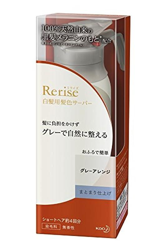 広告新しい意味用心するリライズ 白髪用髪色サーバー グレーアレンジ まとまり仕上げ 本体 155g