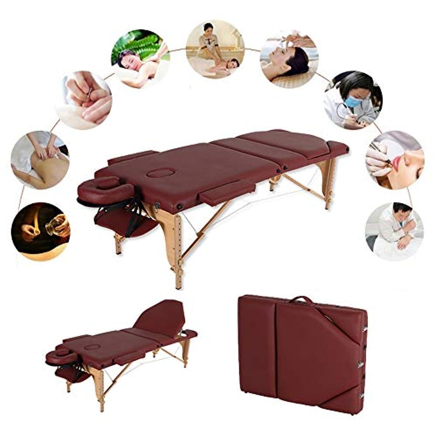 同行する無数の露出度の高いメタルヘッドレストサポート/キャリーバッグ - レイキセラピートリートメントサロン癒しのためのポータブルマッサージベッドテーブル3節折り畳み式美容ソファー