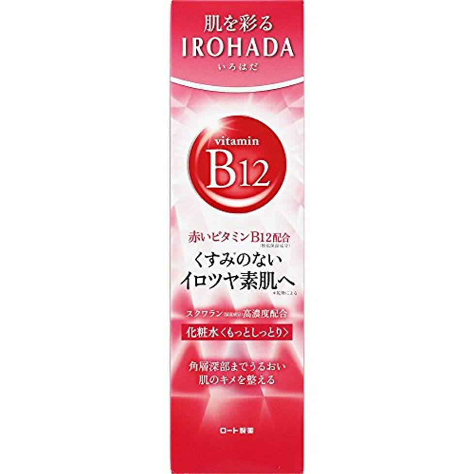 突破口頭蓋骨小数ロート製薬 いろはだ (IROHADA) 赤いビタミンB12×スクワラン配合 化粧水もっとしっとり 160ml
