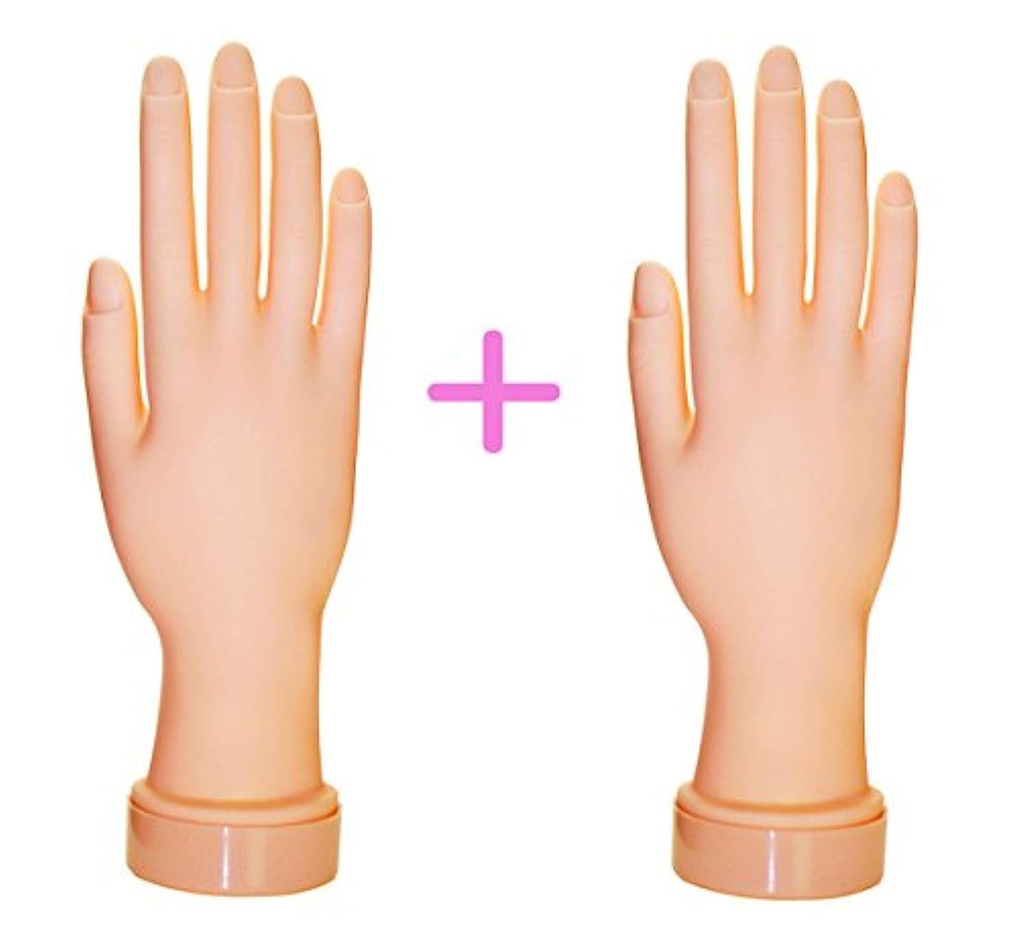 厚い具体的にモードネイル練習用ハンドマネキン2個(右手/左手)/チップ差し込み式 (右手2個)