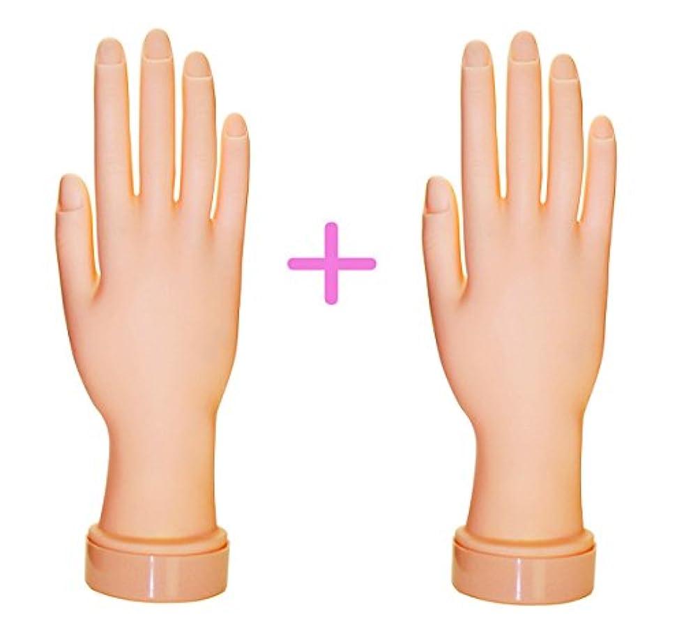 原子ラダ理論【訳あり】ネイル練習用ハンドマネキン2個(右手/左手)/チップ差し込み式 (右手2個)