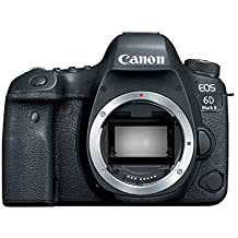 Canon EOS 6D Mark II Body (Japan Domestic Genuine Products)