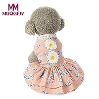 グレー、S:小型犬レーススカートペットの子犬犬プリンセスドレスpetstyle犬の服mascotas ROPAペロスグランデのための用品