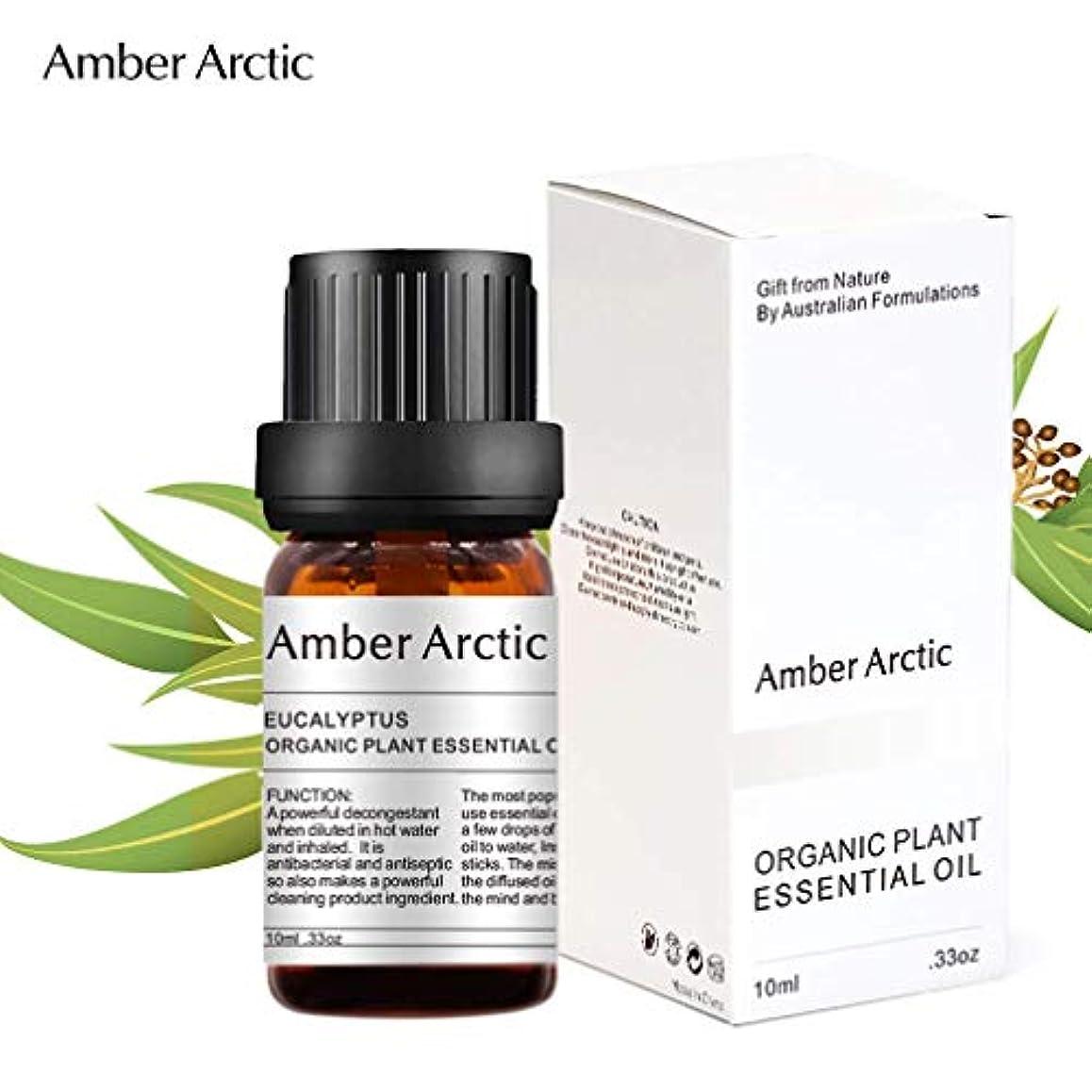 洗練された急降下Amber Arctic ユーカリ エッセンシャル オイル、 ディフューザー 用 100% 純粋 天然 アロマ ユーカリ オイル (10ミリリットル)