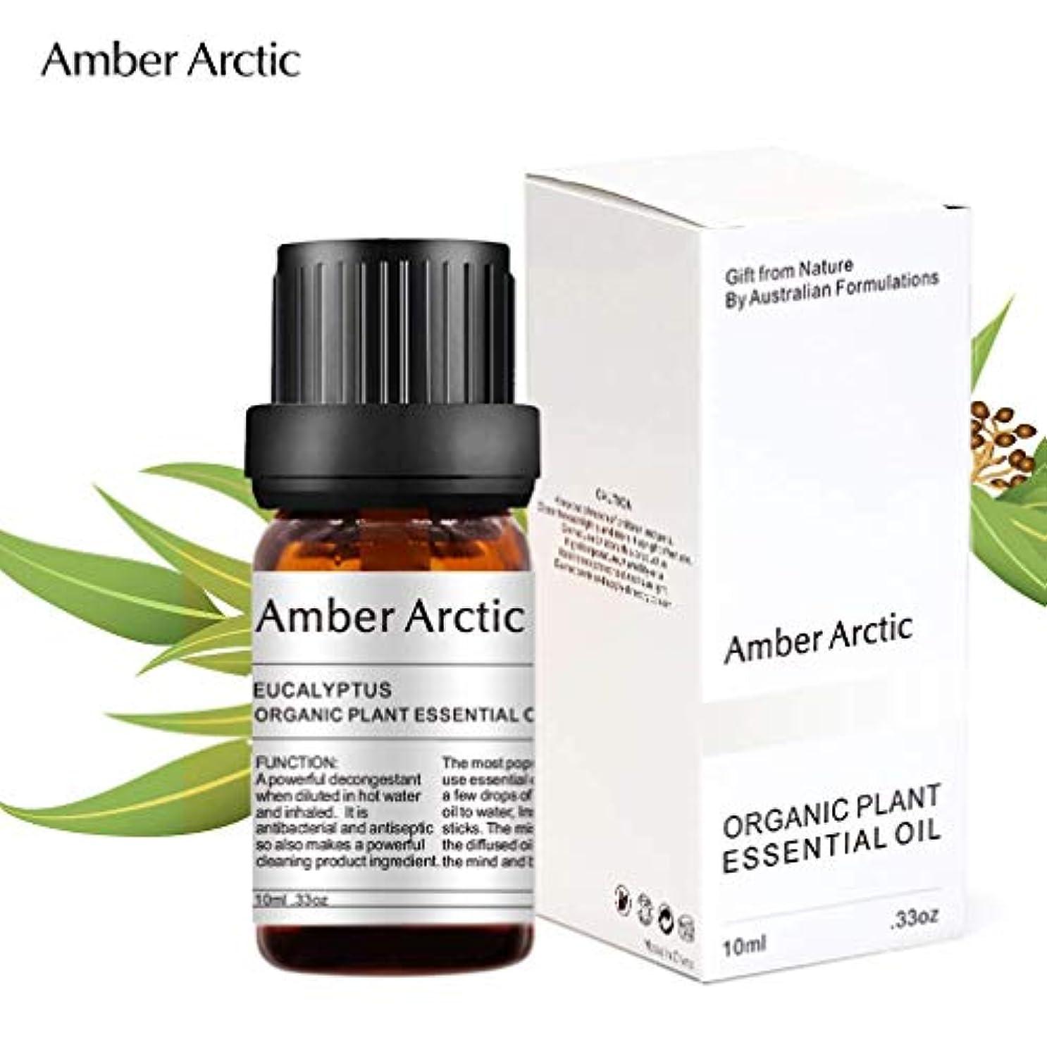 Amber Arctic ユーカリ エッセンシャル オイル、 ディフューザー 用 100% 純粋 天然 アロマ ユーカリ オイル (10ミリリットル)