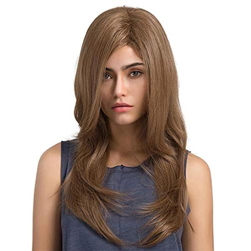 ネズミバンガロー感心する女性の長い巻き毛のかつら パーティーかつら65 cm