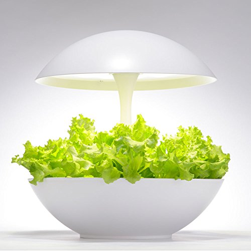 オリンピア照明 LED野菜栽培器 Akarina 01 OMA01RN0J