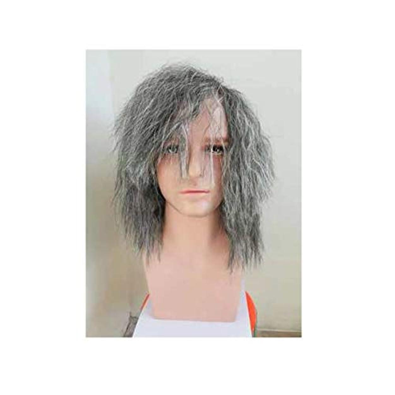 摂氏消毒する後方CN ハロウィーン仮装サベージ爆発ヘッドメンズかつらウィッグホワイトウィッグステージパフォーマンス (Color : Gray)
