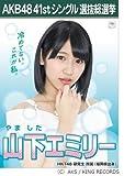 【山下 エミリー】AKB48 僕たちは戦わない 41st シングル選抜総選挙 劇場盤限定 ポスター風生写真 HKT48研究生