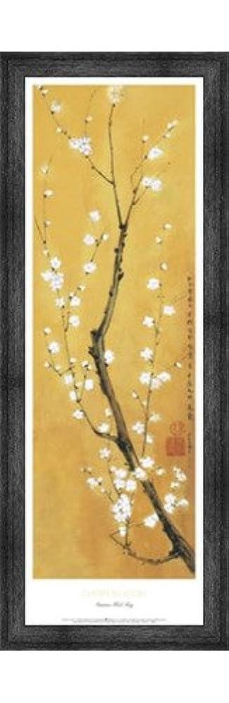 イタリック中間ジーンズCherry Blossom by Suzanna Mah Fong – 11.75 X 36インチ – アートプリントポスター LE_851529-F10588-11.75x36