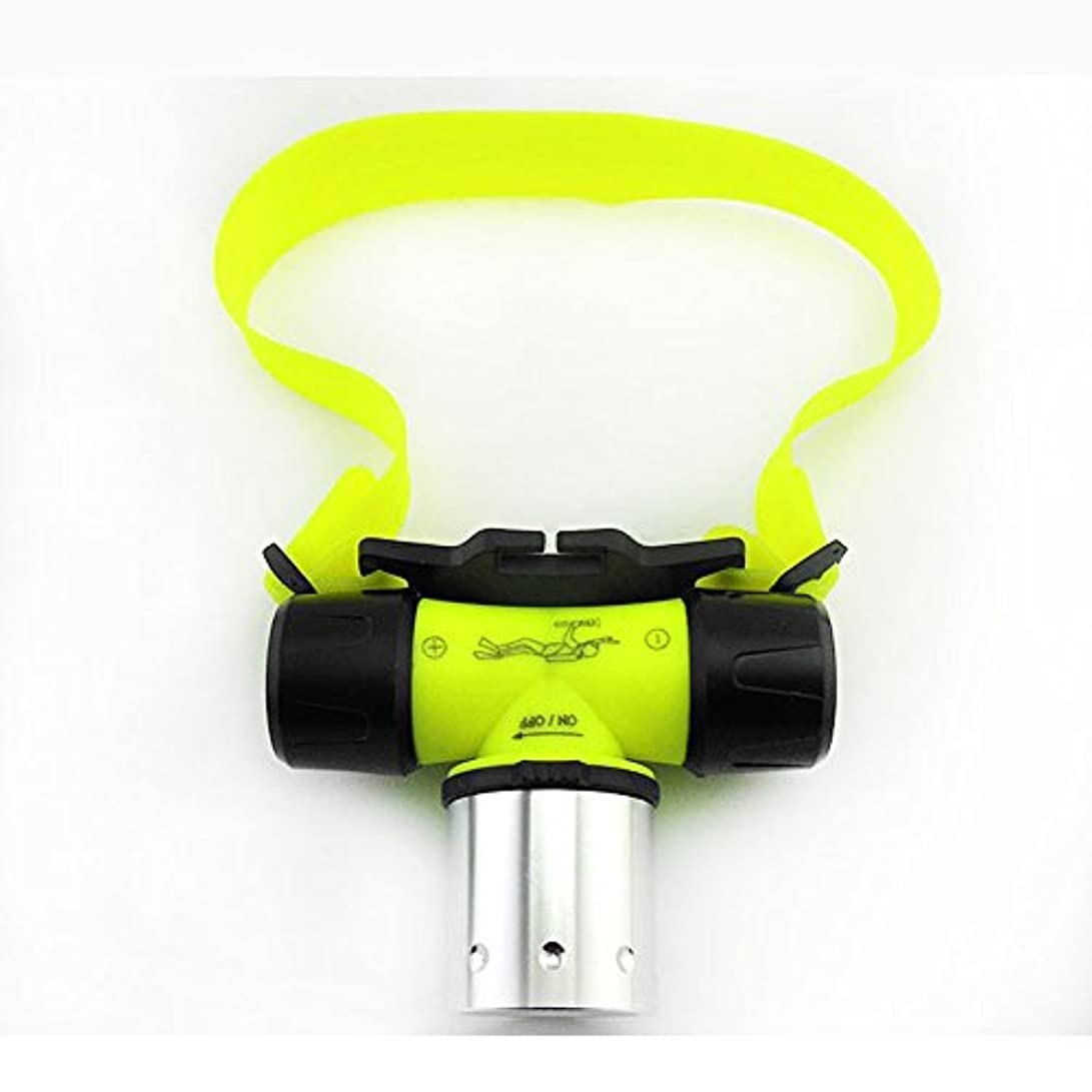 受信機証人干し草LEDヘッドライト 登山 釣り アウトドア 防水 超高輝度LEDヘッドランプ 水中作業灯 軽量