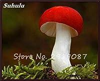 種子パッケージ: 8:ハッピーファーム8のために100個のカラフルな種子Succlent工場食用Ornamentaグリーン健康野菜の種