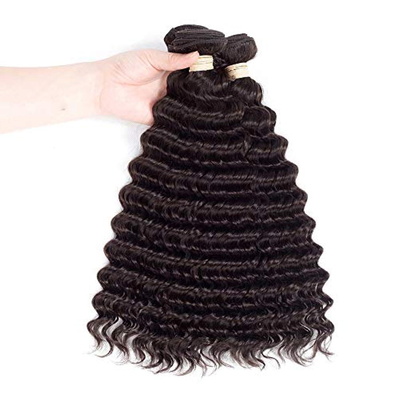 ライトニング確実構造的HOHYLLYA 人間の髪の毛の束ブラジルディープウェーブ本物の人間の髪の毛の織り方#2ダークブラウン(8